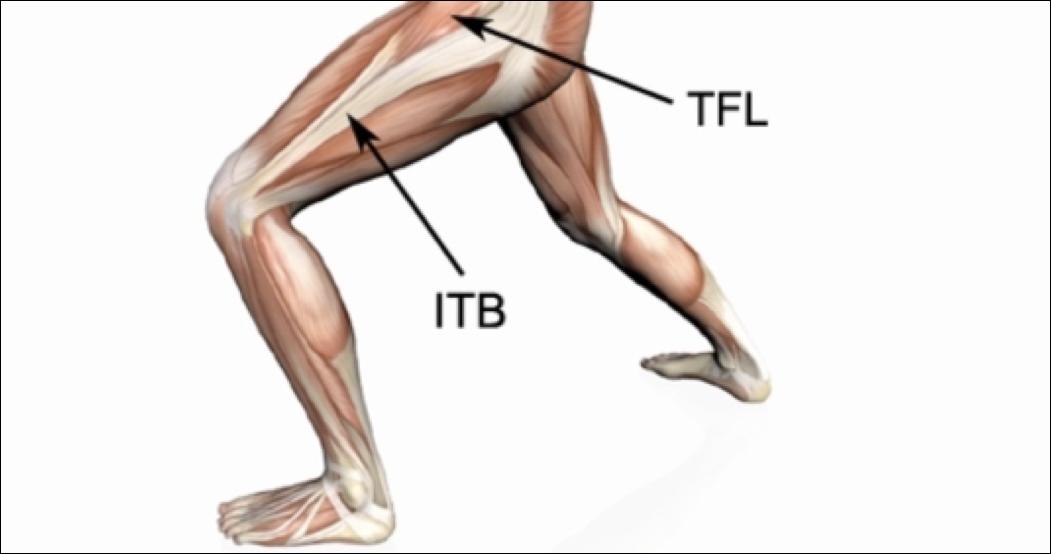 【膝に痛みや違和感があるときに】この筋肉をほぐしてみよう【第二弾 大腿筋膜張筋・TFL】