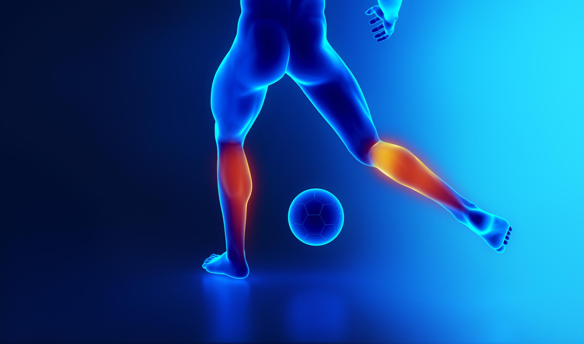 【膝に痛みや違和感があるときに】この筋肉をほぐしてみよう【第五弾 下腿三頭筋】